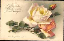 Künstler Ak Klein, Catharina, Glückwunsch Geburtstag, Weiße Rose, Meissner Buch