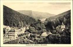 Postcard Ernsttal Mudau bad. Odenwald, Zum Prinzen Ernst, E. Hemberger, Wald