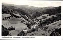 Postcard Bad Peterstal Griesbach Schwarzwald, Blick ins Freyersbachtal, Wald