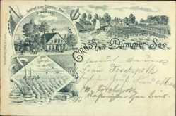 Litho Dümmer Kreis Ludwigslust Parchim, Gasthof zum Dümmer See, E. Wenzel
