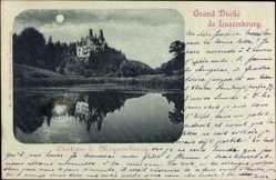 Mondschein Ak Luxemburg, Grand Duché, Château de Meysembourg