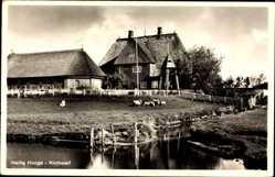 Postcard Hallig Hooge in Nordfriesland, Kirchwarft, Kanalpartie, Schafe