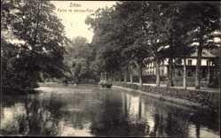 Postcard Zittau in der Oberlausitz, Partie im Weinau Park