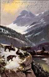 Künstler Ak Schönian, Alfred, Bergziegen im Gebirge, Winter