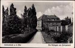 Postcard Schönebeck Elbe, Partie in den Anlagen am Polizeiamt