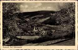 Postcard Nordrach im badischen Schwarzwald, Stadtansicht, Kirchblüte