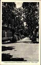 Postcard Münsingen, Truppenübungsplatz, Altes Lager, Allee, Gebäude