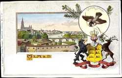 Wappen Ak Ulm an der Donau Baden Württemberg, Ulmer Spatz, Brücke