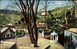 Ansichtskarten Kategorie Madeira