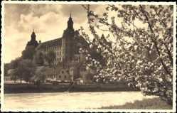 Foto Ak Neuburg an der Donau Oberbayern, Blick auf das Schloß, Baumblüten