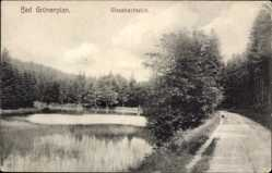 Postcard Grünenplan Delligsen, Partie am Glasebachteich, Spazierweg