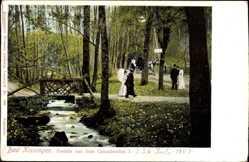 Postcard Bad Kissingen Unterfranken Bayern, Partie aus dem KasKadental I.