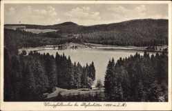 Postcard Altglashütten Feldberg im Schwarzwald, Der Windgfällweiher mit Umgebung