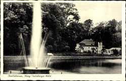Postcard Bad Iburg in Niedersachsen Teutoburger Wald, Charlottensee, Springbrunnen