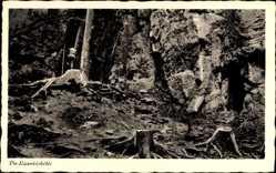 Postcard Brunkensen Alfeld an der Leine, Lippoldshöhle, Baumstumpf
