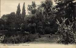 Ak Saint Gratien Val d'Oise, Près du Lac, Kuh am Seeufer