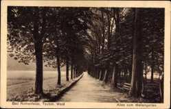 Postcard Bad Rothenfelde am Teutoburger Wald, Allee zum Wellengarten
