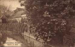 Postcard Oschersleben an der Bode, Flusspartie, Mauer, Häuser, Bewuchs