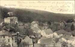 Postcard Elgersburg im Ilm Kreis Thüringen, Stadtansicht, Waldhang, Gebäude