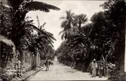 Postcard Cuautla Morelos Derredores Mexiko, Straße, Mexikaner, Palmen