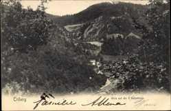 Postcard Triberg im Schwarzwald, Blick auf die 3 Bahnlinien, Häuser, Berg, Wald