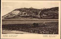 Postcard Haifa Israel, Mount Carmel, Blick zum Berg, Landwirt mit Ackerpflug