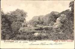 Postcard Groningen Groningen Niederlande, Sterrebosch, Parkanlagen, Fluss, Brücke