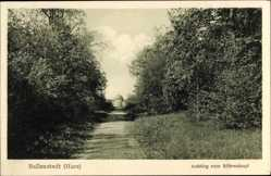 Postcard Ballenstedt im Harz, Aufstieg zum Röhrenkopf, Wegpartie, Gebäude