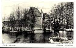 Postcard Schledehausen Bissendorf in Niedersachsen, Schloss Schelenburg, Schwan