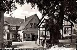 Postcard Tecklenburg in Nordrhein Westfalen, Marktlinde, Fachwerkhaus