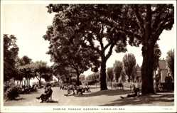 Postcard Leigh on Sea East England, Marine Parade Gardens