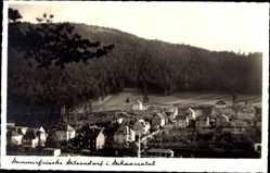 Postcard Sitzendorf an der Schwarza in Thüringen, Gesamtansicht, Wald