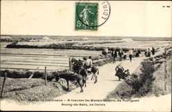 Postcard Batz sur Mer Loire Atlantique, A travers les Marais Salants du Pouliguen