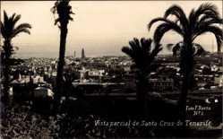 Postcard Santa Cruz de Teneriffa Kanarische Inseln Spanien, Vista Parical, Palmen