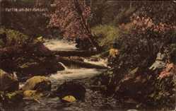Postcard Haslach im Kinzigtal Ortenaukreis Baden Württemberg, Partie an der Haslach