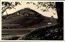 Foto Ak Handthal Oberschwarzach, Blick auf den Stollberg, Waldpartie