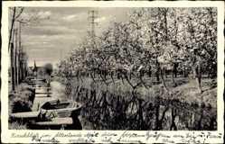 Postcard Jork im Kreis Stade, Kirschblüte im Altenland, Flusspartie, Uferpromenade