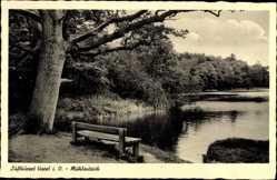 Postcard Varel am Jadebusen, Partie am Mühlenteich, Wald, Bank