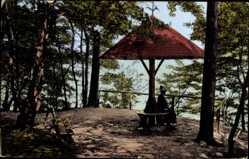 Postcard Lychen im Kreis Uckermark, Zenssee, Partie am Pilz, Vegetation