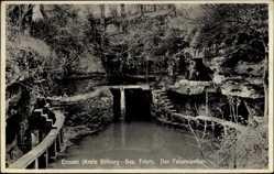 Postcard Ernzen Kr. Bitburg, Blick in den Felsenweiher