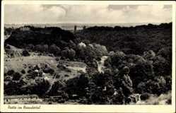 Postcard Erkrath Nordrhein Westfalen, Partie im Neandertal