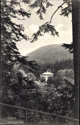 Postcard Tabarz im Thüringer Wald, Blick auf die Villa Spindler vom Wald aus
