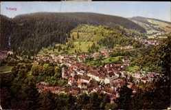 Postcard Triberg im Schwarzwald, Totalansicht der Ortschaft, Wald, Berge
