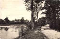 Postcard Pließkowitz Malschwitz Oberlausitz, Blühender Teich, Wegpartie