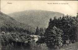 Postcard Tabarz im Thüringer Wald, Pension Waldhütte im Lauchagrund, Wald