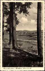 Postcard Benneckenstein Oberharz am Brocken, Waldblick zum Ort