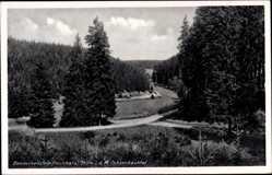 Postcard Benneckenstein Oberharz am Brocken, Ochsenbachtal
