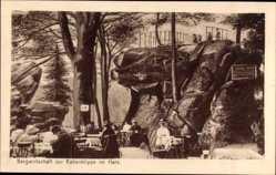 Postcard Bad Harzburg in Niedersachsen, Bergwirtschaft zur Rabenklippe im Harz
