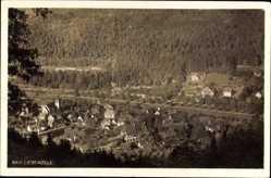 Postcard Bad Liebenzell im Schwarzwald, Panorama auf den Ort, Wald