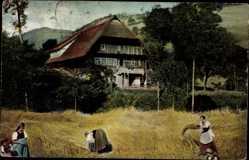 Ak Bauernhaus im Gutachtale, Feldarbeit, Schwarzwälder Bauernhaus